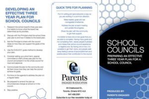 School Councils – 3 Year planning